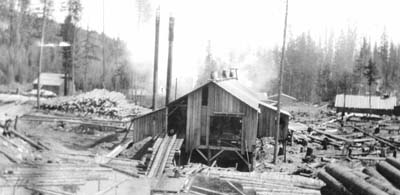White Pine Savages: Ellersick's in the Lumber industry